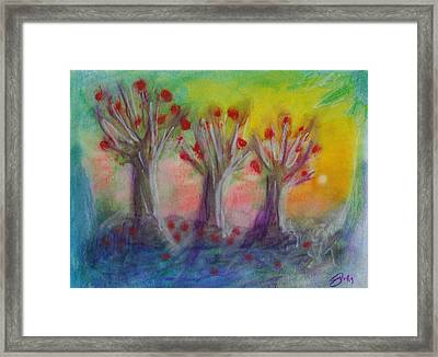 Old Apple Orchard Framed Print by Donna Blackhall