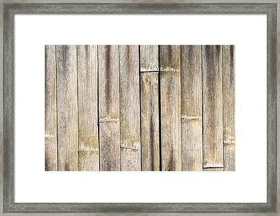 Old Bamboo Fence Framed Print