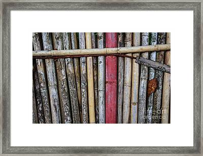 Old Bamboo Fence Framed Print by Niphon Chanthana