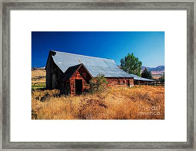 Old Barn And Shed Framed Print