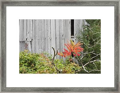 Old Barn In Fall Framed Print by Keith Webber Jr