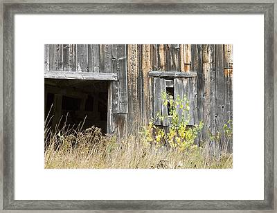 Old Barn In Fall Maine Framed Print by Keith Webber Jr