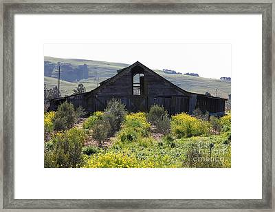 Old Barn In Sonoma California 5d22236 Framed Print by Wingsdomain Art and Photography