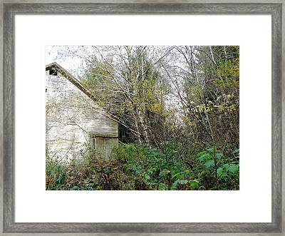 Old Barn In The Trees Framed Print