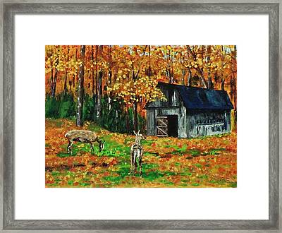 Old Barn In The Woods Framed Print