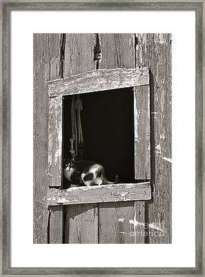 Old Barn Window Framed Print by Tim Good