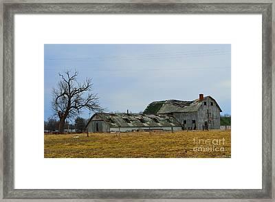 Old Barns In The Heartland Framed Print