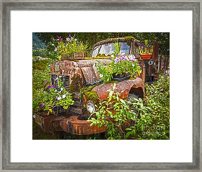 Old Truck Betsy Framed Print by Mike Reid
