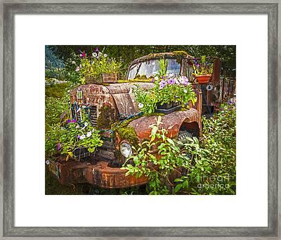 Old Truck Betsy Framed Print
