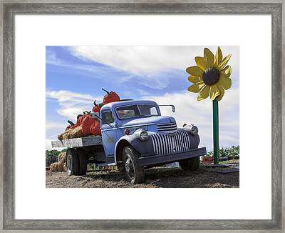 Old Blue Farm Truck  Framed Print by Patrice Zinck