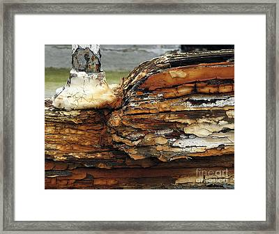 Framed Print featuring the photograph Old Boat by Inge Riis McDonald