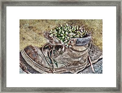 Old Boot Flowerpot Framed Print