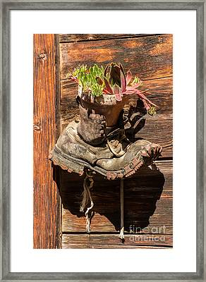 Old Boot Potted Plant - Swiss Alps Framed Print by Gary Whitton