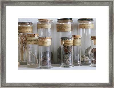 Old Botanical Specimen Jars Framed Print