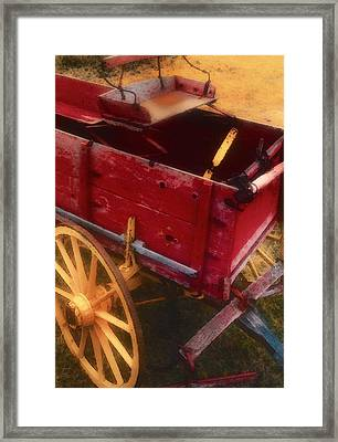 Old Buck Framed Print by Stephen Anderson
