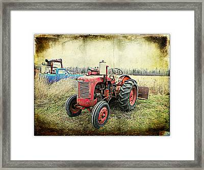 Old Buddies  Framed Print by Dianne  Lacourciere