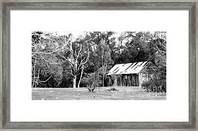 Old Bush Shed Framed Print