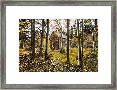 Old Cabin In Iron Town Colorado Framed Print by James Steele
