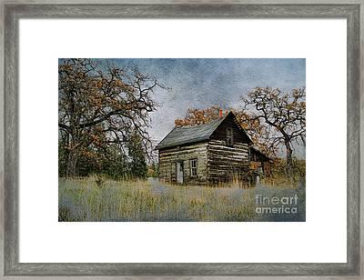 Old Cabin Framed Print by Steve McKinzie