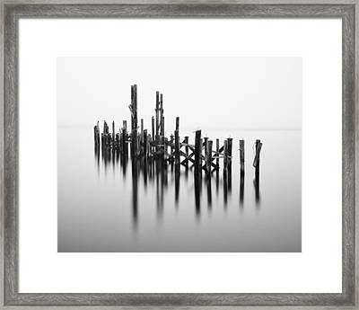 Old Dock Pilings - Tacoma - Washington - January 2014 Framed Print