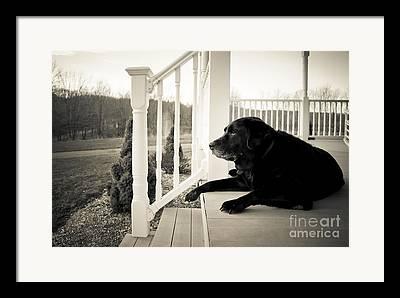 Front Porch Photographs Framed Prints