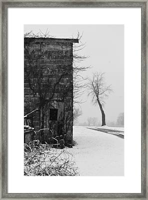 Old Door And Tree Framed Print by William Jobes