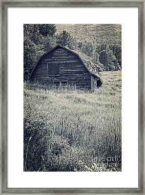 Old Falling Down Barn Blue Framed Print