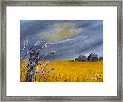 Old Farm 1 Framed Print by Beverly Livingstone
