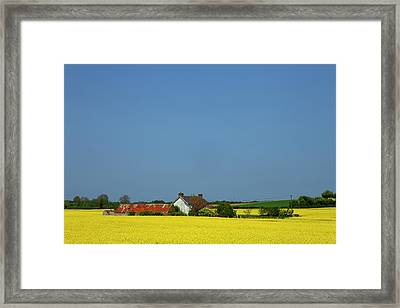 Old Farm Surrounded In Oilseed Rape Framed Print by Panoramic Images