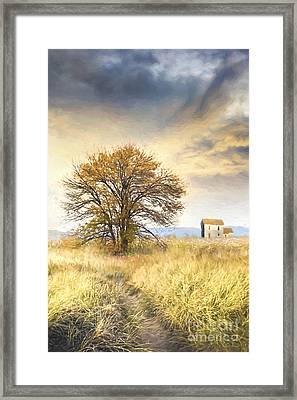 Old Farmhouse In Fields/ Digital Painting Framed Print by Sandra Cunningham