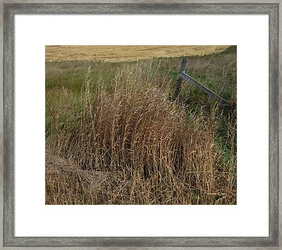 Old Fence Line Framed Print by Donald S Hall