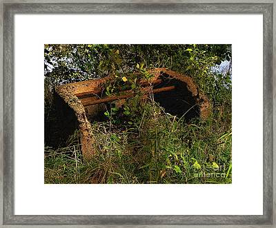 Old Firepit By The Pond Framed Print