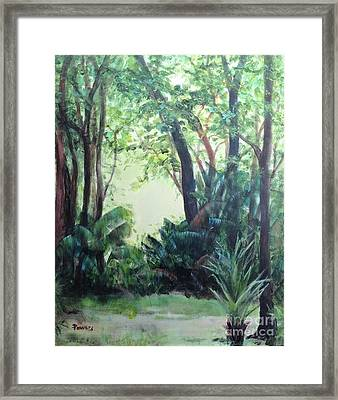 Old Florida 5 Framed Print by Mary Lynne Powers