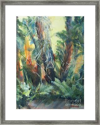 Old Florida Framed Print by Mary Lynne Powers