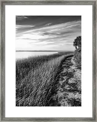 Old Florida's Forgotten Coast Framed Print by Mark Wright