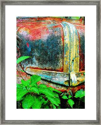 Old Ford #1 Framed Print by Sandy MacGowan