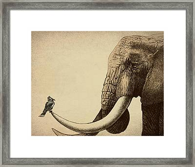 Old Friend Framed Print by Eric Fan