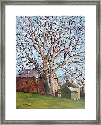 Old Friends Framed Print by Diane Hutchinson