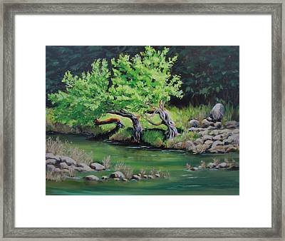 Framed Print featuring the painting Old Friends by Karen Ilari