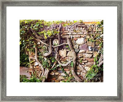 Old Garden Wall Framed Print by Lutz Baar