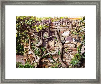 Old Garden Wall Framed Print by Lutz Baar