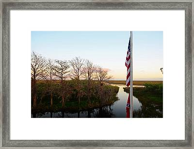 Old Glory And Cypress Framed Print by Ken  Collette