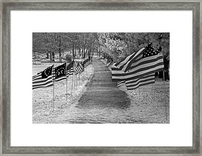 Old Glory Ir Framed Print