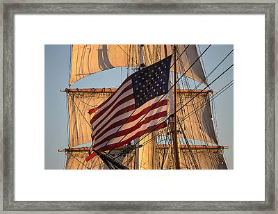 Old Glory Framed Print by Peter Tellone