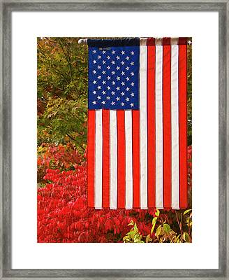 Old Glory Framed Print by Ron Roberts
