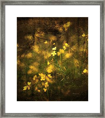 Old Gold Framed Print by Georgiana Romanovna