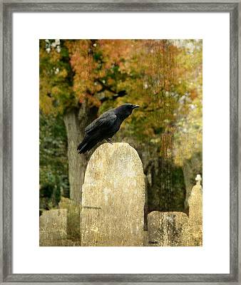 Old Graveyard And Crow Framed Print
