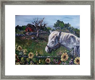Framed Print featuring the painting Old Grey Mare by Megan Walsh