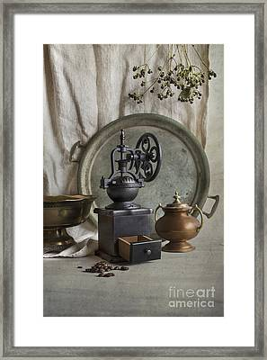 Old Grinder Framed Print by Elena Nosyreva