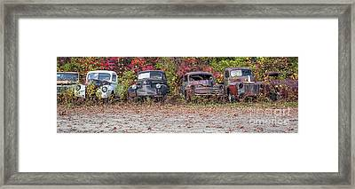 Old Guys Rule Panoramic Framed Print by Edward Fielding